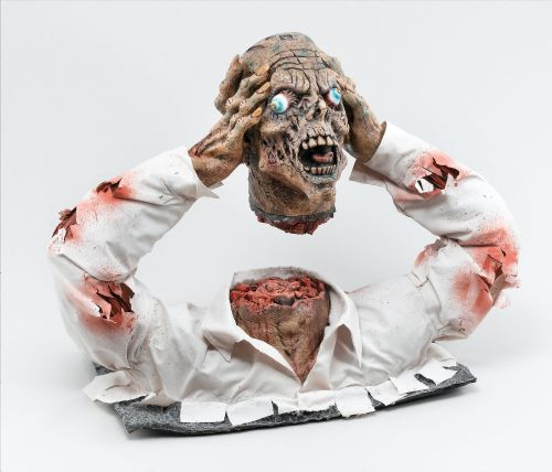 Halloween Cut Off Zombie Head Display Trick Or Treat Fancy Dress Party